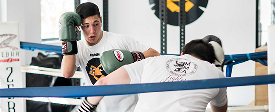 boxeo zaragoza